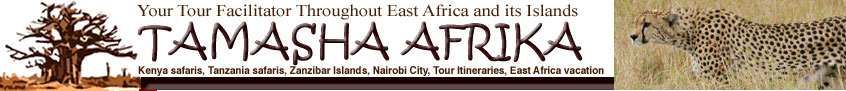 TAMASHA AFRIKA Kenya safaris, Tanzania safaris, Zanzibar Islands, Nairobi City, Tour Itineraries, East Africa vacation